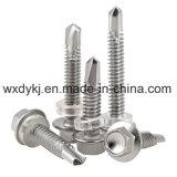 Vis Drilling de toit de rondelle de tête d'individu Hex d'acier inoxydable
