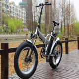 20 '' Folding Fat Tire Electric Mountain Bicycle Bike