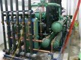 녹이는 최신 가스를 가진 평행한 나사 유형 압축기 압축 단위