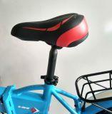 [س] جديد يوافق سمين إطار العجلة مصغّرة طيّ درّاجة كهربائيّة مع يخفى بطّاريّة