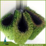 自然な庭のカーペット草
