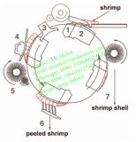 Peladora del camarón, máquina de proceso del camarón, camarón Peeler