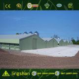 Besparing van kosten prefabriceerde Modulair Huis voor het Landbouwbedrijf van de Kip