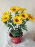 Verkaufs-wohle dekorative künstliche Blumen
