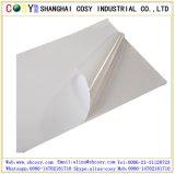 디지털 인쇄 및 훈장을%s 높은 광택 있는 PVC 자동 접착 비닐 스티커