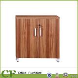 Mobiliário de escritório Gabinete de arquivo de porta de balanço de madeira de vidro duplo