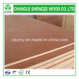 Bintangor barato Plywood para Furniture y Decoration