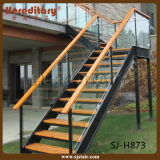 Escalera recta de acero modular del vidrio helado del pasamano (SJ-H879)