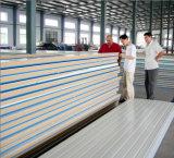 El panel de emparedado de la PU, los paneles de la cámara fría para la conservación en cámara frigorífica