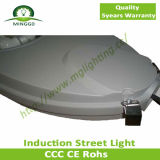 lâmpada leve ao ar livre da estrada da luz de rua da indução 80W~100W
