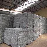 Treillis métallique hexagonal en plastique bon marché du treillis métallique d'approvisionnement de la Chine 80X100mm Gabion