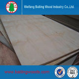 Alta qualità Commercial Plywood con Low Price