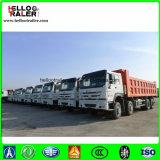 Samd와 석탄을%s HOWO 8X4 광산 팁 주는 사람 덤프 트럭