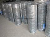 Chinesisches Factorysupplier galvanisierte geschweißten Eisen-Maschendraht
