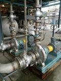 Edelstahl-Korrosionsbeständigkeit-chemische Öl-Pumpe