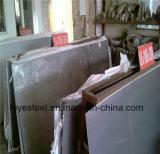 310S de Gegalvaniseerde Plaat van het roestvrij staal Blad