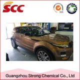 Puder und Coating State und Acrylic Main Raw Material Car Paint