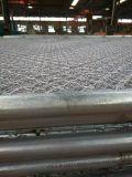 El acoplamiento de alambre revestido de la dimensión de una variable del diamante del PVC se divierte la cerca de la conexión de cadena