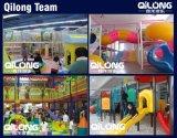 動物の世界の子供の屋内運動場(QL-1205H)