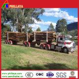 Dos acoplado de madera de los árboles 40FT