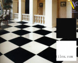 600X600m m, 800X800m m, Super White y Black Flooring Tiles, Polished Porcelain Floor Tile, Double Loading Tile, Ceramic Wall Tiles
