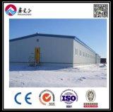 Профессиональное изготовление пакгауза стальной структуры (BYSS2016021507)