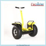 weg vom Straßen-elektrischen Roller mit Cer FCC und RoHS