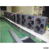 HK210 verdoppeln Berufsaudiolautsprecher der Tonanlage-10inch