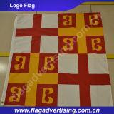 옥외 광고 회사 로고 깃발, 인쇄된 직물 승진 깃발