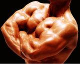 Ganho esteróide androgénico do músculo de Primo do acetato de Primobolone Methenolone