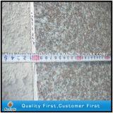De goedkope Natuurlijke G664 Loopvlakken en de Stootborden van de Trede van de Stappen van de Steen van het Graniet