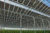Serre chaude photovoltaïque pour le légume et horticulture
