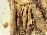 통조림으로 만들어진 Mackerel Fillet 또는 Canned Fish/Canned Mackerel