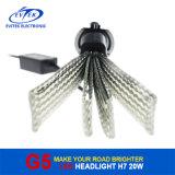 8-32V LEIDENE van gelijkstroom 20W 2600lm H7 6500k AutoKoplamp
