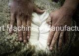Máquina de cardadura da máquina de cardadura da caxemira de lãs/salgueiro da fibra