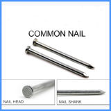 Constructionのための円形のFlat Head Common Wire Nail