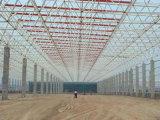 Le professionnel a conçu la construction de structure métallique