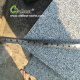 Pietra per lastricati del pavimento esterno grigio scuro antiscorrimento del granito