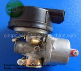 Motor van de Fiets van de Uitrustingen van de Motor van de Uitrusting van de Fiets van Ce de Pas Gemotoriseerde 80cc A80 80cc