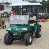 [هدك] كهربائيّة لعبة غولف عربة صغيرة في شاطئ ضاحية غابة ([دل2022د2ز])