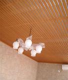 Het Plafond van Eco