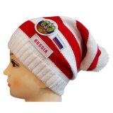 Bonnet tricoté à deux tons avec tricot en logo avec POM POM au dessus