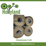 Cubierto y grabó la bobina de aluminio (HLA1012)