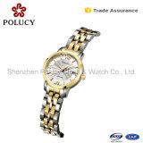 Het Geval 3ATM van het Roestvrij staal van juwelen Dame Watch met Gouden Plateren