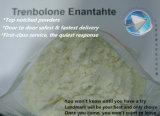 Poudre appliquée Tren E Trenbolone Enanthate d'hormone stéroïde de grande pureté