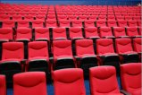 Plastic Armrest Theater Chair Auditorium Chair Seats를 가진 중국 VIP Cinema Chairs Seating Movie Chair