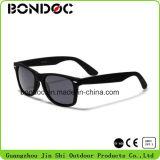 최신 판매 UV400 보호 색안경