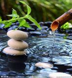 Van de Micro- van Peaktop de Pomp Eigenschap van het Water