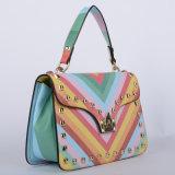Nuove borse delle signore dell'unità di elaborazione della banda del Rainbow di disegno (P6199)
