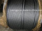 Corda galvanizzata /Electro del filo di acciaio. Corda galvanizzata del filo di acciaio